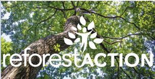 Groupe Sionneau partenariat Reforestaction planter arbres Bois de Ressons Oise